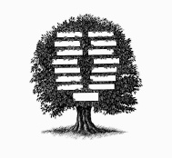 arvore genealogica.jpg